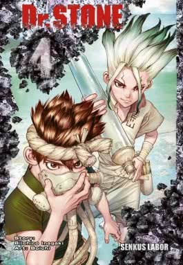 Dr. Stone 4