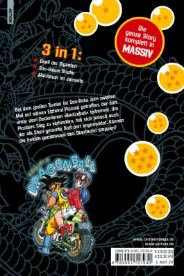 Dragon Ball Massiv 6